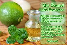 Mint Scented Air Freshener