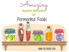 Amazing Health Benefits of Fermented Foods and 30% off coupon for new fermentation book.