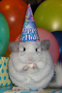 Happy birthday to me:)