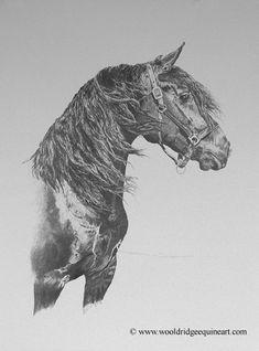 Pat Wooldridge - Equine Artist, The Art