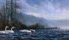 By don kloetzke (2580x1505, don)  via www.allwallpaper.in