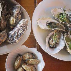 Sequência de ostras #foodporn by raquelccordeiro