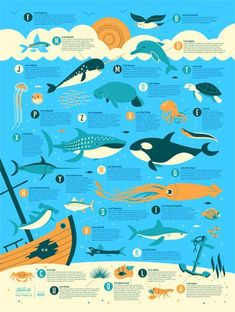 Ocean Alphabet by Dave Perillo. I don't think anyone understands how much I would LOVE this in my classroom!: