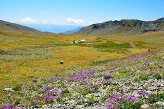 Turkey, Nature, Landscape, Kaçkars
