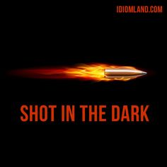 "Hello guys! Our #idiom of the day is ""Shot in the dark"", which means ""an attempt to guess something when you have no information or knowledge about it"". #english #idioms"