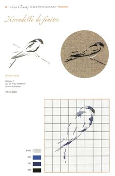 Gallery.ru / Фото #42 - Les Oiseaux - Orlanda