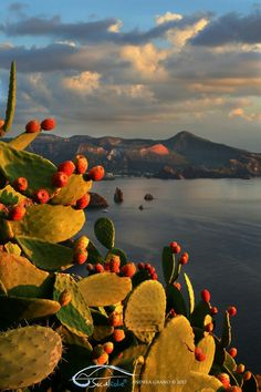 Eolie - Lipari island