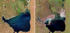 Argentínska Mar Chiquita v júli 1998 vs. v septembri 2011. (Foto: NASA)