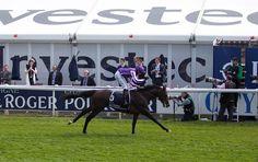 Boisdale's 2012 Epsom Derby - Horse racing Derby Horse Race, Horse Racing, Epsom Derby, Horses, Horse
