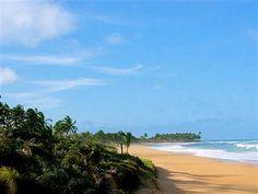 Oportunidade única para adquirir uma propriedade excepcional localizado na exuberante Praia de Cassagne – eleita como uma das praias mais bonitas do Brasil.