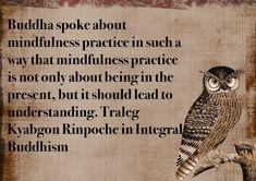 #compassion #love #buddha #buddhism #buddhist #dharma #dhamma #mahayana #bodhicitta #vajrayana #tralegkyabgon #tralegrinpoche #tralegkyabgonrinpoche #tulku #rinpoche