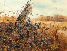 Wild Grapes, collection of the Miller Art Museum