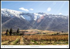 So much excitement caused by .The most snow we've had in. Cape Town, South Africa, Snow, Mountains, City, Gallery, Nature, Travel, Naturaleza