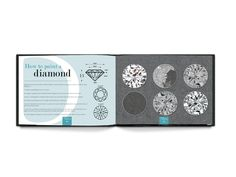 Trade secrets diamond, gemstone and jewellery painting tutorial book from Mask Jewellery, now on kickstarter  http://kck.st/1DJTuUV
