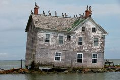 Sea Level Rise is Happening! Holland Island is a marshy, rapidly-eroding island in the Chesapeake Bay, in Dorchester County, Maryland, west of Salisbury. The island was once inhabited by watermen and farmers, but has since been abandoned.The last house on Holland Island in May 2010. This house fell into the bay in October 2010.