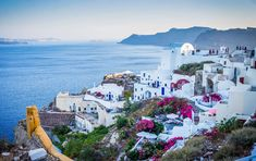 #aegean #architecture #beautiful #beauty #blue #coast #flowers #greece #greek #holiday #island #landscape #nature #oia #outdoor #santorini #sea #sky #summer #sunny #sunset #tourism #town #travel #tropical #vacation #w
