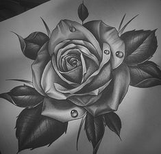 200 Photos of Female Tattoos on Arm for Inspiration – Photos and Tattoos – Tattoo Drawings Hai Tattoos, Bild Tattoos, Neck Tattoos, Body Art Tattoos, Sleeve Tattoos, Cool Tattoos, Female Tattoos, Tattos, Flower Tattoo Designs