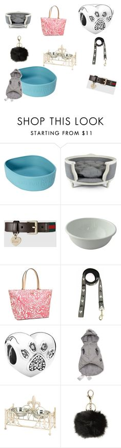 """""""pet things"""" by tracy-douglas-1 on Polyvore featuring interior, interiors, interior design, home, home decor, interior decorating, Lord Lou, Gucci, Match and Kate Spade"""