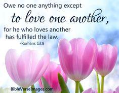 Bible Verse about Love - Romans 13:8 Best Bible Verses, Bible Verses About Love, Bible Quotes, Scriptures, Psalm 118, Psalms, Bible Verse Search, Roman Quotes, Childlike Faith