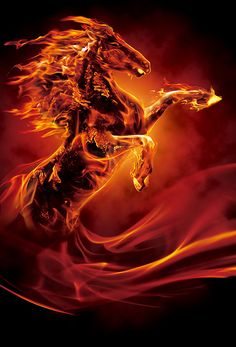 Fire horse - Fire horse on Behance Tranquil Assurance Horse Wallpaper, Lion Wallpaper, Animal Wallpaper, Dark Fantasy Art, Fantasy Artwork, Tiger Artwork, Dragon Artwork, Fire Horse, Mythical Creatures Art