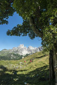 Austria, Mountains, Nature, Travel, Outdoor, Walking Paths, Climbing, Tourism, Road Trip Destinations