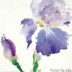 Olivia Thornton - Iris