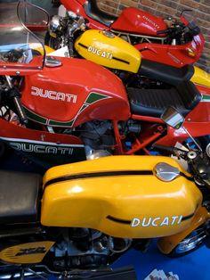 Ducati and Ducati and Ducati...