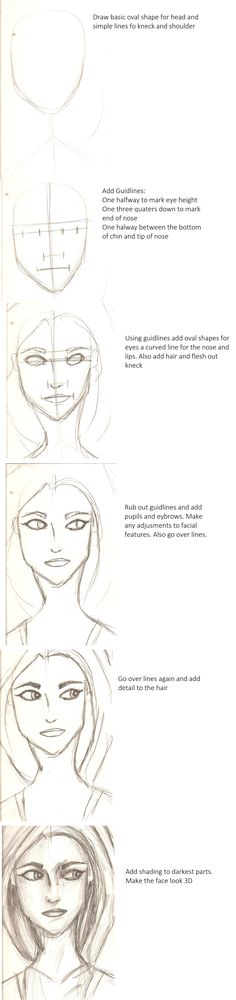 Your average tutorial on how to draw a face. Just don't be disappointed if it doesn't turn out how you want it to. Drawing takes practice. And lots of it.