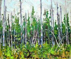 1915 Black Spruce and Cherry Blossoms http://ttlastspring.com #tt1915