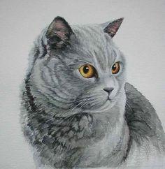 British Shorthair watercolour painting