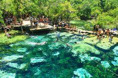 Un cenote que parece una piscina azul a cielo abierto en la Riviera Maya (Cenote Azul)