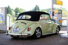 Volkswagen Beetle Cabriolet, Volkswagon Van, Volkswagen Models, Vw Cabriolet, Vw Volkswagen, Karmann Ghia Convertible, Vw Beetle Convertible, Kdf Wagen, Hot Vw