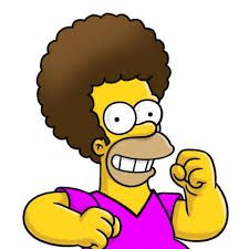 Image result for homer