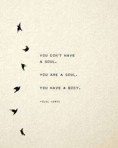 C.S. Lewis Quote You don't have a soul. You are a soul. You have a body. gift for her, soul quote, wall decor, bird art, gift idea
