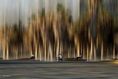 Josh Adamski, conceptual photography.