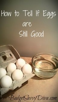 Find out if the eggs in your fridge are still good by just using a bowl of water. Awesome budget tip.