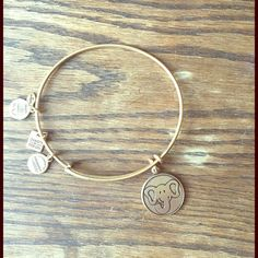 "Alex and Ani Elephant Charm Bracelet Alex and Ani Elephant Charm Bracelet in gold. In great condition. No bends. ""The elephant walks through life with family close by in a loyal and dedicated manner. Extraordinarily protective, elephants are known to stand up for others encouraging the values of camaraderie, perseverance, and unity. With a trunk up for luck, wear The Elephant Charm to inspire others to pursue their passions and embrace the power of teamwork."" Alex & Ani Jewelry Bracelets"