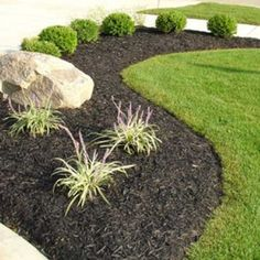 front yard landscape with black mulch; I love this nice clean look; I would just add some colored flower pots with white flowers in them.