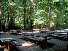San Mateo County - Department of Parks - Memorial Park: Huckleberry Flat 2 - maybe a good spot for a picnic reception if using the amphitheater? #2 is wheel-chair accessible!