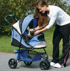 16 Reasons to Use a Dog Stroller See? I'm not crazy for getting Honey a stroller.