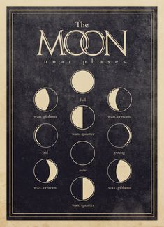 Lunar Phases Moon Cycles Framed Art Print by Mjordanh - Vector Black - Photo Wall Collage, Picture Wall, Collage Art, Foto Poster, Poster Wall, Poster Prints, Images Murales, Harry Potter Poster, Plakat Design