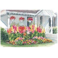 All Summer Blooming Garden Design
