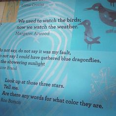 """""""We used to watch the birds; now we watch the weather."""" - Margaret Atwood"""