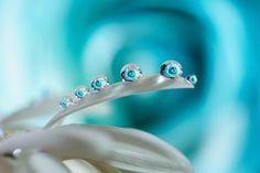 Blue drops -