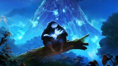 Ori And The Blind Forest: http://www.oriblindforest.com/
