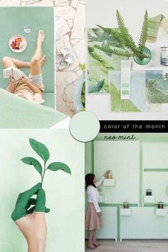 COLOR TREND 2020 Neo mint in interiors and design – colorfulinteriors Neon Colors, Accent Colors, Paint Colours, Bathroom Wallpaper Trends, Rosa Millennial, Seafoam Green Color, Mint Green Paints, Mint Wallpaper, Green Painted Walls