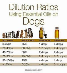Dillution for dogs