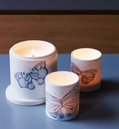 Butterfly candles and votives by Conran