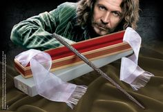 Baguette magique boîte Ollivander Sirius Black - Harry Potter