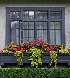 Rien n'habille mieux une fenêtre de l'Extérieur qu'un bel arrangement dans un bac à fleurs!!!!